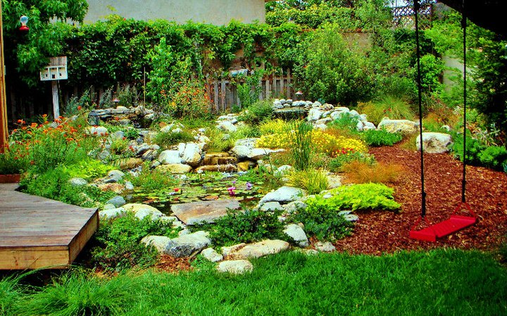 Drought Tolerant Garden Design trends in backyard design whats hot now hgtv The New Califonia Friendly Garden 1