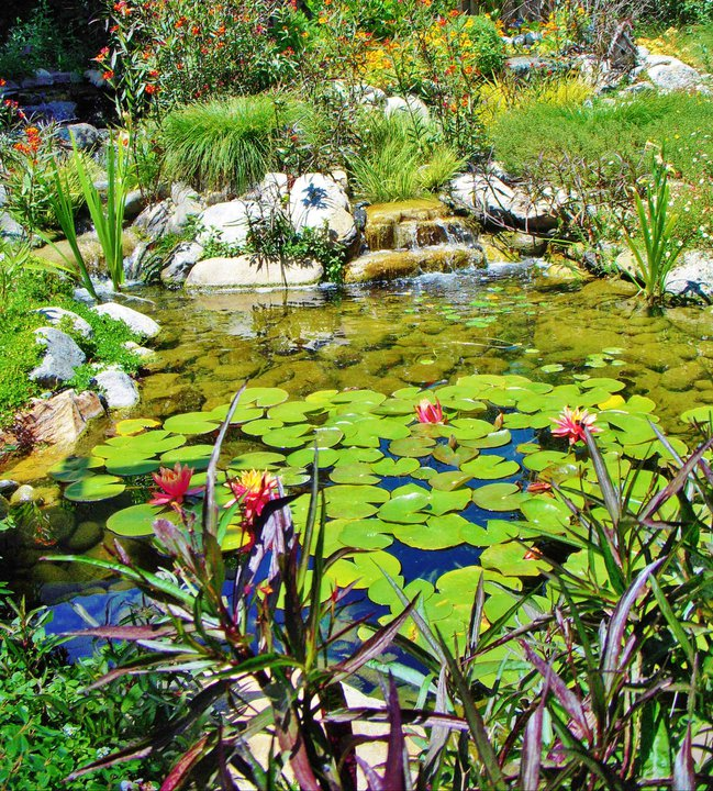 Water Features | Enviroscape LA Landscape Design Manhattan Beach