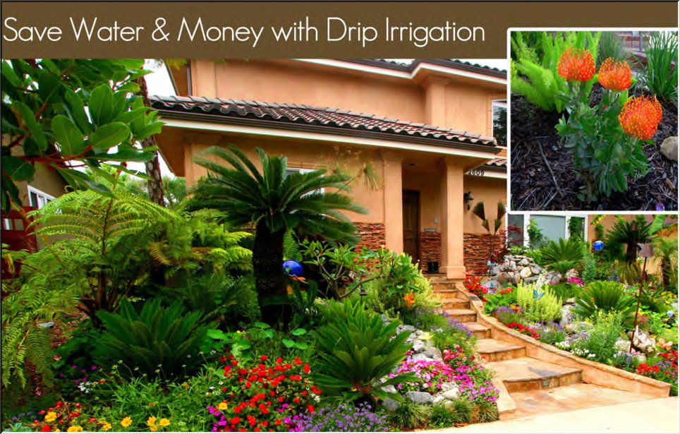 Landscape Redondo Beach CA « Manhattan Beach Landscaping ...
